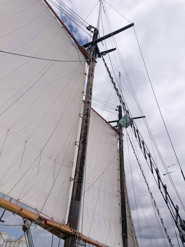 Mast and main
